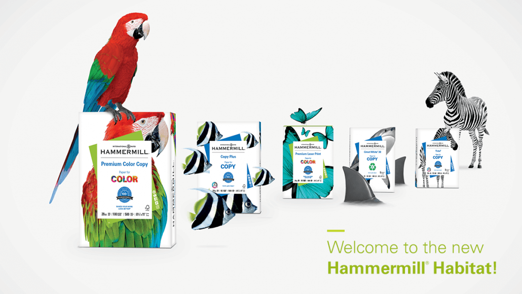 blog-new-look-for-hammermill