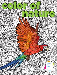 color-of-nature-coloringbook-cover-thumbnail